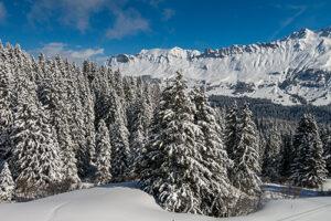 Winter sneeuw en bergen