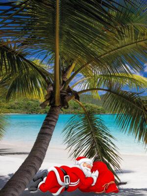Kerstman onder palm