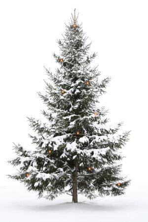 Kerstboom met gele lichtjes (geprint)