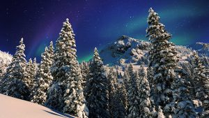 Sneeuw en Noorderlicht