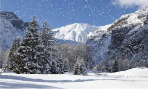 Achtergrond winter in de bergen sneeuwvlokken