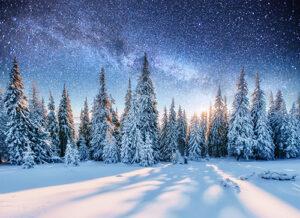 Sterrenhemel sneeuwlandschap