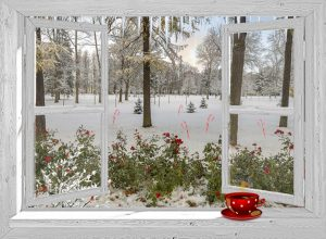 Open wit venster - winter - frosti park fancy kerst