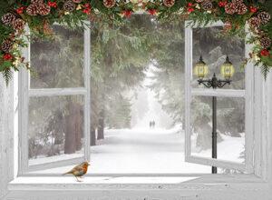 kerstposter open raam met roodborstje